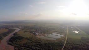O rio flui na floresta 7 video estoque