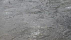 O rio flui sobre as rochas neste lugar bonito no outono video estoque