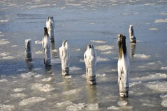 O Rio Hudson congelado, New York City, cais afundado Imagens de Stock
