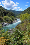 O rio majestoso de Buller entra no desfiladeiro de Buller da costa oeste. imagem de stock