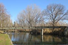 O rio Mincio de Goito Mantova Itália protegeu o parque imagens de stock