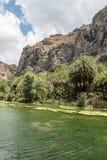 O rio nas montanhas Fotografia de Stock