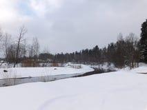 O rio no gelo Fotos de Stock