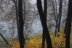 O rio no outono Foto de Stock Royalty Free