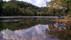 O rio novo remove-me Fotografia de Stock