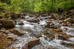 O rio pequeno chamou Ilse em Harz Alemanha Fotos de Stock Royalty Free