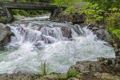 O rio pequeno nas montanhas fumarentos em Tennessee After uma chuva pesada fotografia de stock