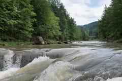 O rio pequeno quieto na madeira Fotos de Stock Royalty Free