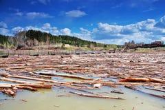 O rio Siberian no período de um ponto alto da mola Fotografia de Stock