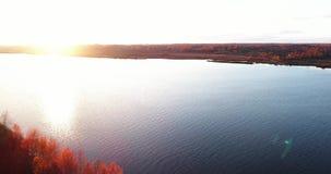 O Rio Volga no outono no quadcopter da opinião aérea do nascer do sol sobre a floresta 4k video estoque