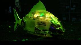 O robô dos peixes nada no aquário e vislumbra com cores diferentes filme