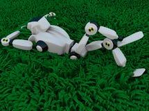 O robô na grama Fotografia de Stock