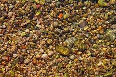 O rolamento colorido apedreja o teste padrão da parte inferior de mar Fotos de Stock Royalty Free