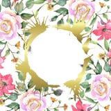 O rosa aumentou flores bot?nicas florais do ramalhete Grupo da ilustra??o do fundo da aquarela Quadrado do ornamento da beira do  ilustração royalty free