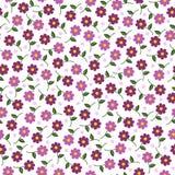 O rosa pequeno floresce o teste padrão sem emenda Fotografia de Stock Royalty Free