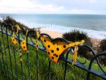 O roupa de banho das férias do oceano do mar informa decorações do sutiã Imagem de Stock Royalty Free