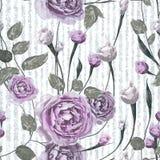 O roxo aumentou flores com as folhas em fundo azul e branco listrado ilustração do vetor