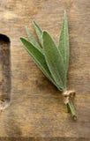 O sábio orgânico colhido fresco empacotado sae na BO de corte de madeira Imagens de Stock Royalty Free
