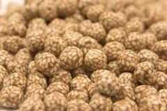 O sésamo cobriu o foco dos grãos-de-bico Foto de Stock Royalty Free