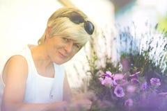 O sênior mantém suas flores do balcão Fotos de Stock Royalty Free