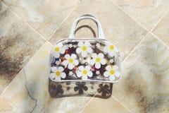 O saco da menina Fotos de Stock Royalty Free