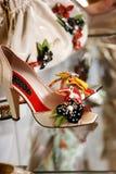 O saco das sapatas da fêmea dos calçados mostra-windFemale calçados Imagens de Stock