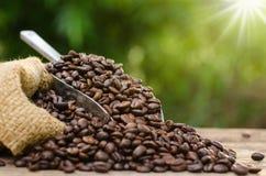 O saco e o café de feijão do café roasted sobre o fundo do verde da natureza Fotografia de Stock Royalty Free