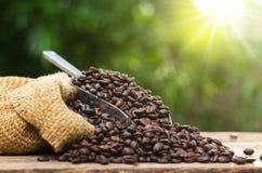 O saco e o café de feijão do café roasted sobre o fundo do verde da natureza Foto de Stock Royalty Free