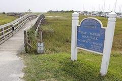 O sal Marsh Boardwalk e a via navegável negligenciam foto de stock royalty free