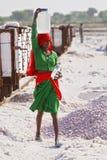 O sal trabalha, lago de sal de Sambhar, Rajasthan, India fotografia de stock