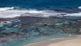 O salmão fura a praia Imagens de Stock Royalty Free