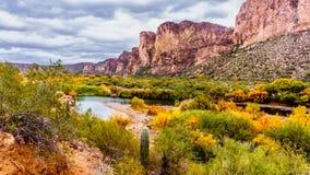 O Salt River e as montanhas circunvizinhas no Arizona Foto de Stock