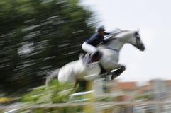 O salto do cavalo foto de stock
