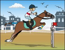 O salto do cavalo fotografia de stock royalty free