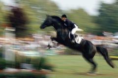 O salto do cavalo Imagem de Stock