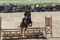 O salto do cavalo Fotografia de Stock