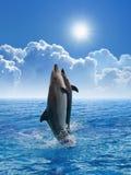 O salto dos golfinhos fotografia de stock royalty free