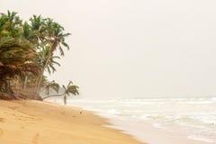 O Sandy Beach, palmeiras sobre a água, cerca assimétrico, acena Imagem de Stock