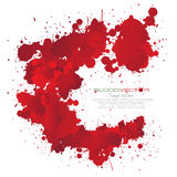 O sangue chapinha isolado no fundo branco, Imagem de Stock