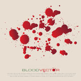 O sangue do vetor chapinha isolado, projeto Foto de Stock Royalty Free