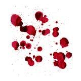 O sangue espirra Imagem do vetor isolada em um fundo branco Imagem de Stock Royalty Free