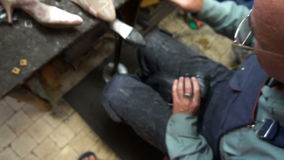 O sapateiro no trabalho O processo de reparar sapatas na oficina vídeos de arquivo
