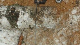 O sawing entra usando uma serra do poder video estoque