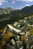 O Scree com as montanhas Imagens de Stock Royalty Free