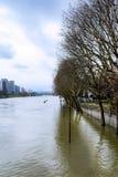 O Seine em Paris na inundação fotografia de stock