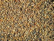 O seixo natural apedreja a textura Imagem de Stock Royalty Free