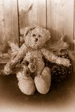 O sepia rústico tonificou o urso de peluche Fotografia de Stock Royalty Free