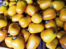 O sessiliflorum ou Cocona do Solanum são um fruto que cresça em áreas tropicais imagens de stock royalty free