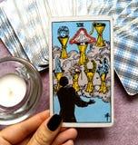 O sete VII do cartão de tarô dos copos foto de stock royalty free