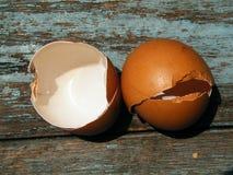 O shell de ovo é cozinhado fotografia de stock royalty free